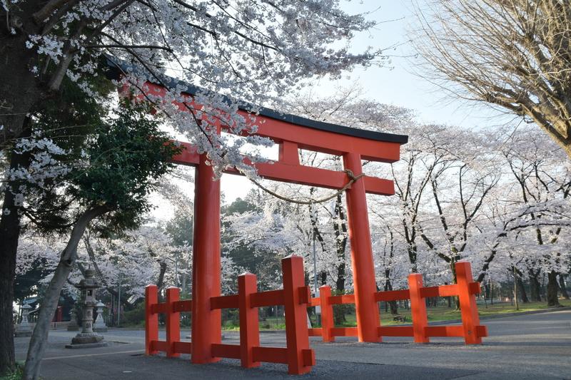 桜 諏訪神社